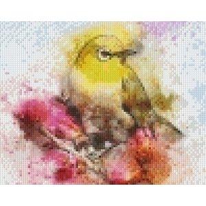 PixelHobby Pixelhobby patroon 5537 Colorful bird