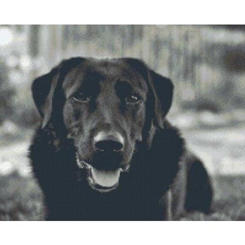 PixelHobby Pixelhobby patroon 5411 Zwarte Labrador