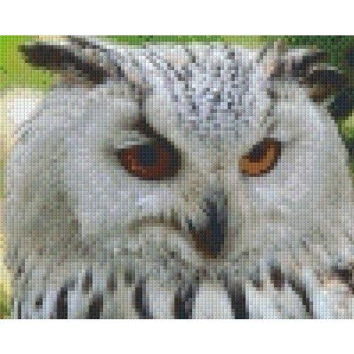 PixelHobby Pixelhobby patroon 5494 Sneeuwuil