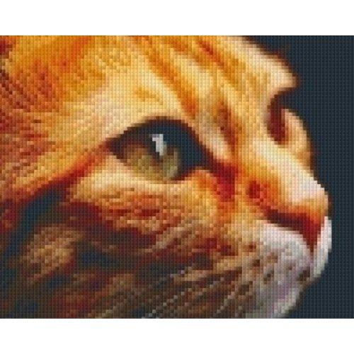 PixelHobby Pixelhobby patroon 5492 Rode Kat
