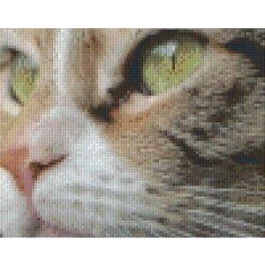PixelHobby Pixelhobby patroon 5472 Gezicht van een Kat