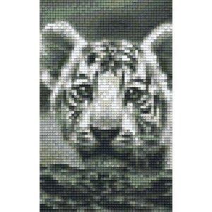 PixelHobby Pixelhobby patroon 802108 witte tijger welp