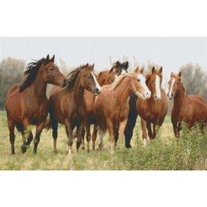 PixelHobby Pixelhobby patroon Paarden 5248