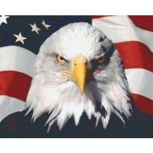 PixelHobby Pixelhobby patroon 5365 Amerikaanse vlag