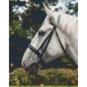 PixelHobby Pixelhobby patroon 5344 Paardenhoofd