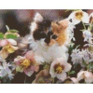PixelHobby Pixelhobby patroon 5323 Poesje tussen de bloemen