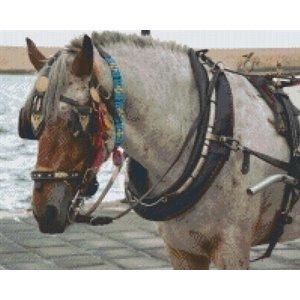 PixelHobby Pixelhobby patroon 5240 Paard