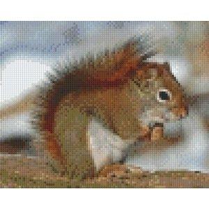 PixelHobby Pixelhobby patroon 5294 Eekhoorn