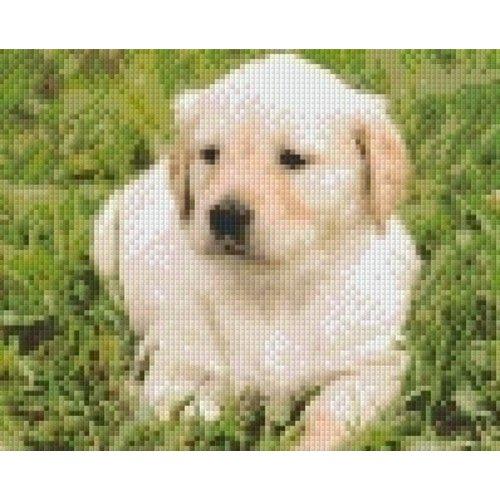 PixelHobby Pixelhobby patroon 5278 Golden retriever pup