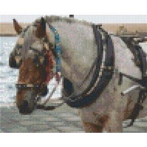 PixelHobby Pixelhobby patroon 5239 Paard