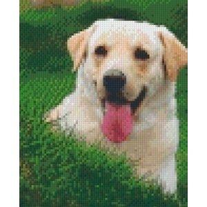 PixelHobby Pixelhobby patroon 5195 Labrador