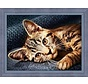 Artibalta Diamond Painting Cat Barsik AZ-1700