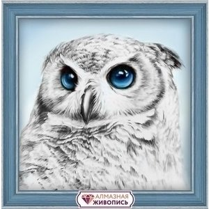 Artibalta Artibalta Diamond Painting Owl Sight AZ-1549