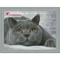 Diamond Painting British Cat AZ-1463 Artibalta