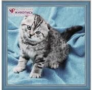 Artibalta Artibalta Diamond Painting pakket Kitten AZ-1465
