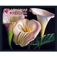 Diamond painting kit Beautiful Callas AZ-1361
