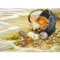 Diamond painting Seashells in the basket AZ-1069