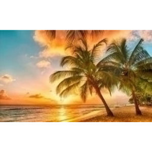 Artibalta Diamond painting kit Tropical Sunset AZ-1063