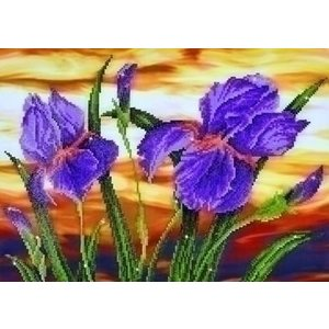 Diamond Dotz Diamond Dotz Iris Sunset DD9.016