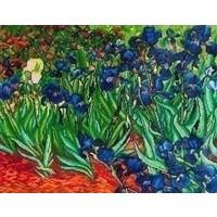 Diamond Dotz Irises (Van Gogh) DD13.007