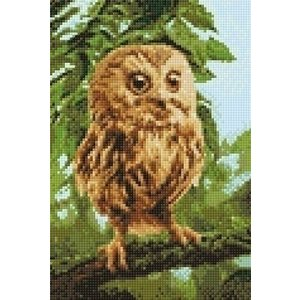Wizardi Wizardi Diamond Painting Owl Mickie WD246