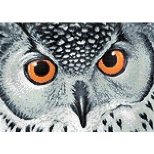 Wizardi Wizardi Diamond Painting Owl's Look WD243