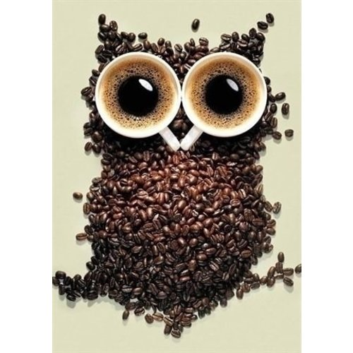 Wizardi Diamond Painting Coffee Owl WD242 Wizardi