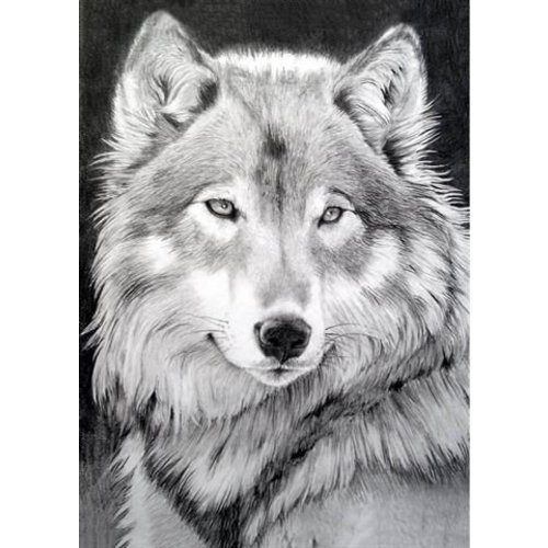 Wizardi Wizardi Diamond Painting Grijze Wolf WD086
