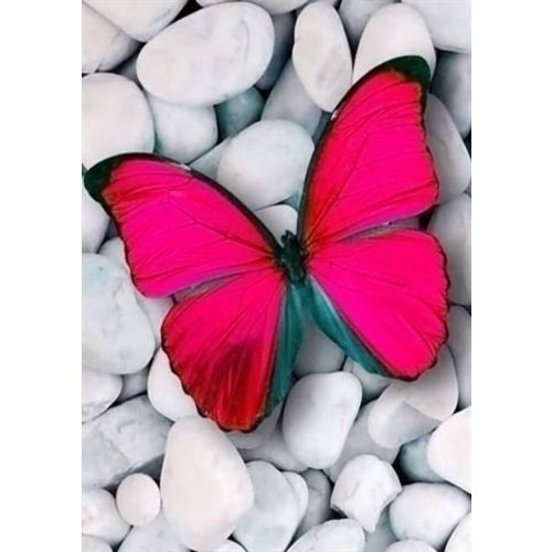 Wizardi Wizardi Diamond Painting Pink Butterfly WD054