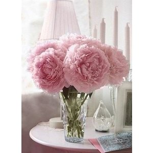 Wizardi Wizardi Diamond Painting Soft Peonies WD002