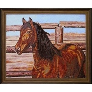 Collection D Art CDA Diamond Painting pakket Mustang DE075
