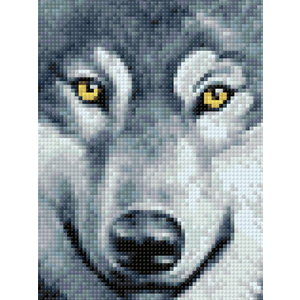 Wizardi Diamond Painting Wolf Look WD2361
