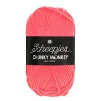 Scheepjes Chunky Monkey 100 gram 2013 Punch