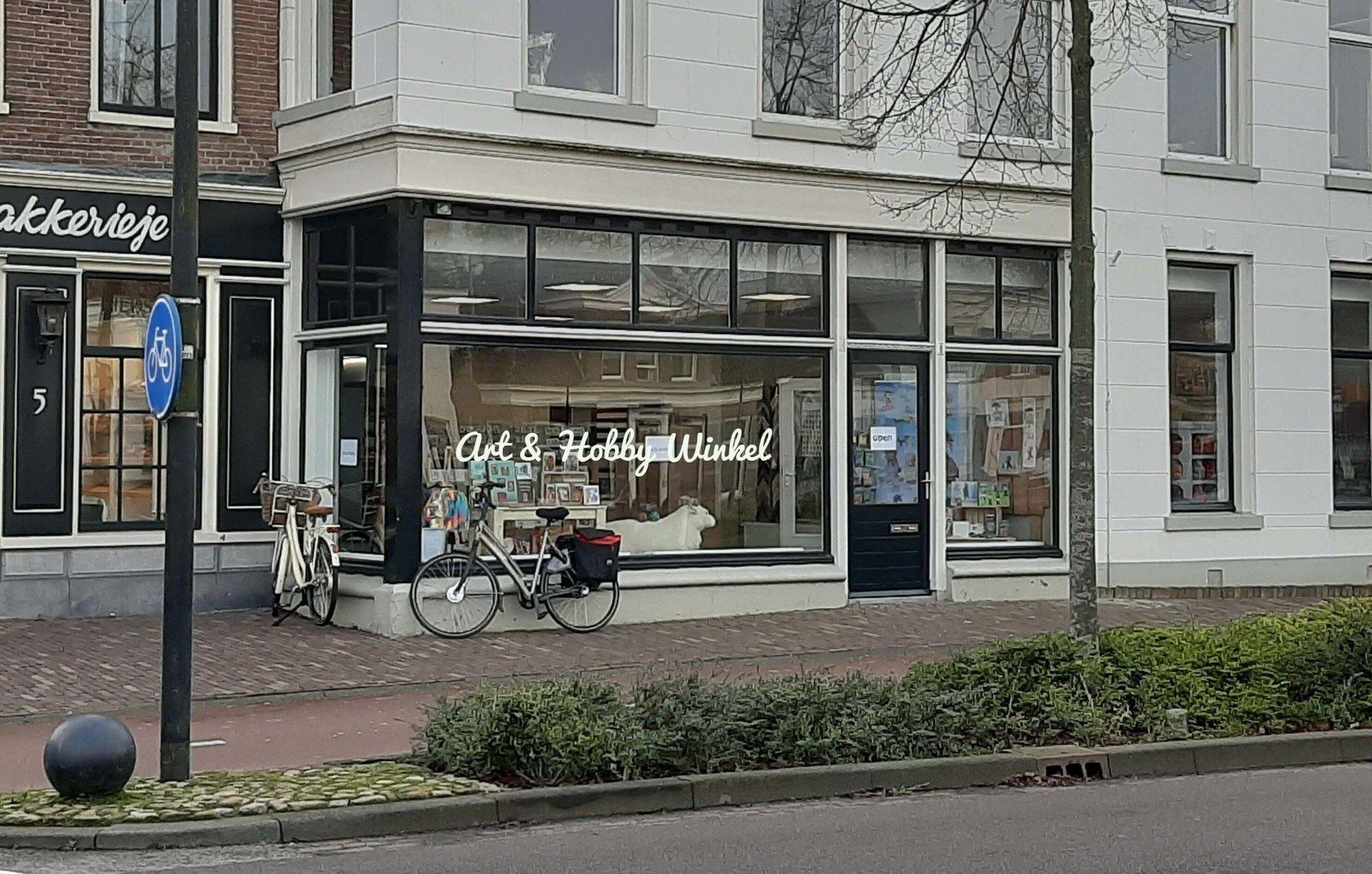 Art en Hobby Winkel Assen Drenthe