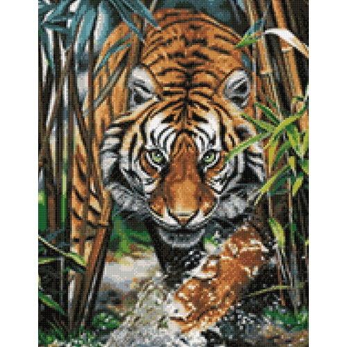Wizardi Diamand Painting tijger WD2482