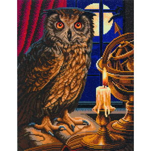 Crystal Art Diamond Painting The Astrologer Owl CAK-A99L