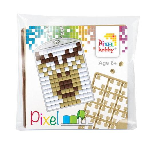 PixelHobby Pixelhobby Medaillon Startset Rendier 23042