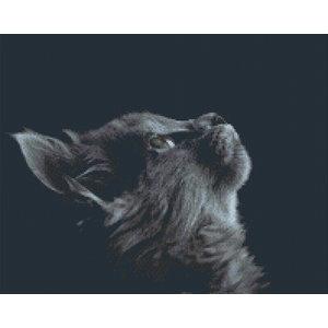PixelHobby Pixelhobby Patroon 5602 Mystic Cat