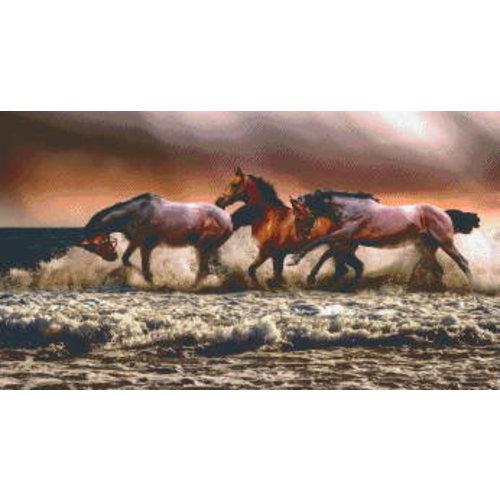 PixelHobby Pixelhobby Patroon 5611 Paarden in de Branding