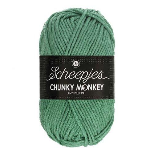 Scheepjeswol Scheepjes Chunky Monkey 100 gram 1725 Eucalyptus