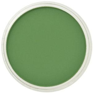 PanPastel PanPastel Pastelnap Chromium Oxide Green 9 ml
