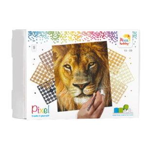 PixelHobby Pixelhobby Geschenkverpakking Leeuw 90046