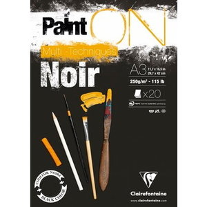 Clairefontaine Clairefontaine Paint On Noir 250 gram 20 vel Multi Media