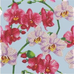 Crystal Art Crystal Art Diamond Painting Kaart Orchideeën IT8