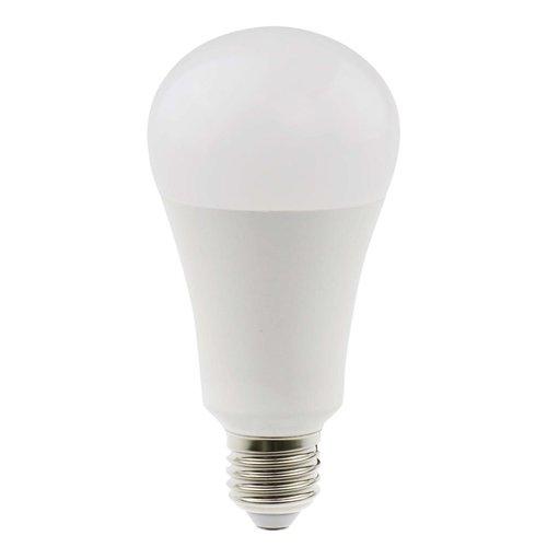 Daylight Daylight LED lamp 15W