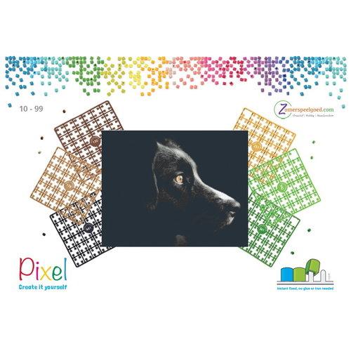 PixelHobby Pixelhobby patroon 5637 Black Beauty