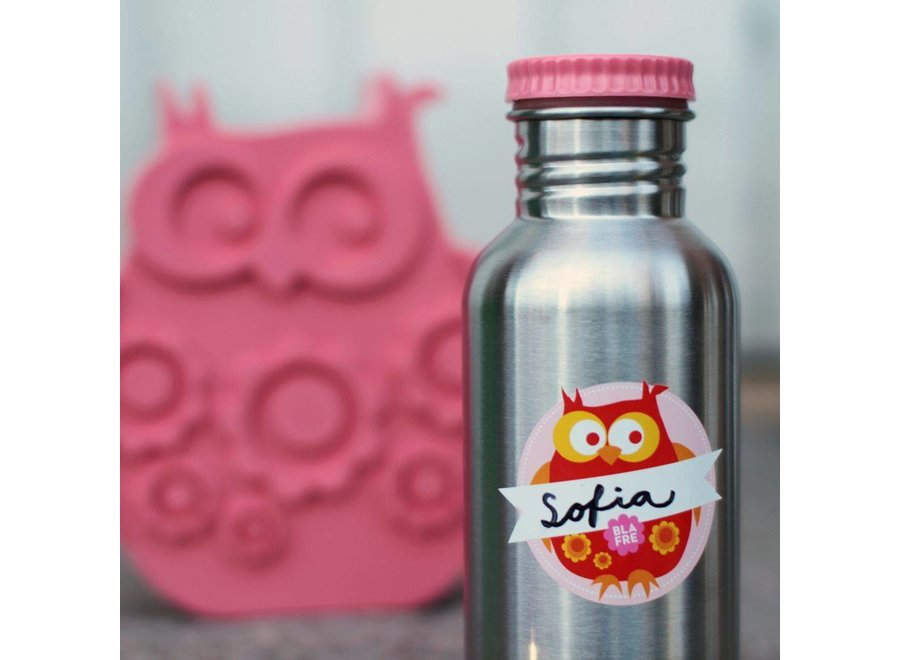 Coole stalen drinkfles 300ml roze | Blafre
