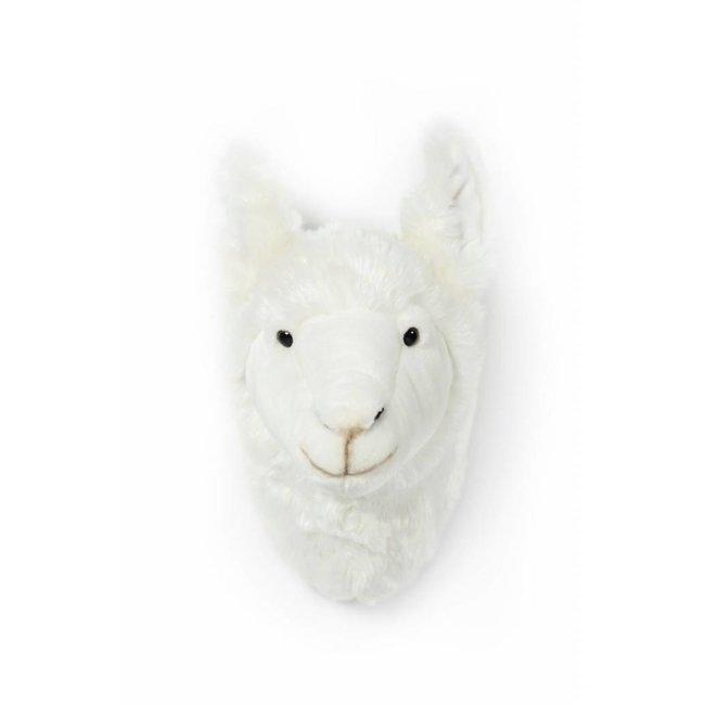 Dierenkop Trophy Lama Lily   Wild & Soft