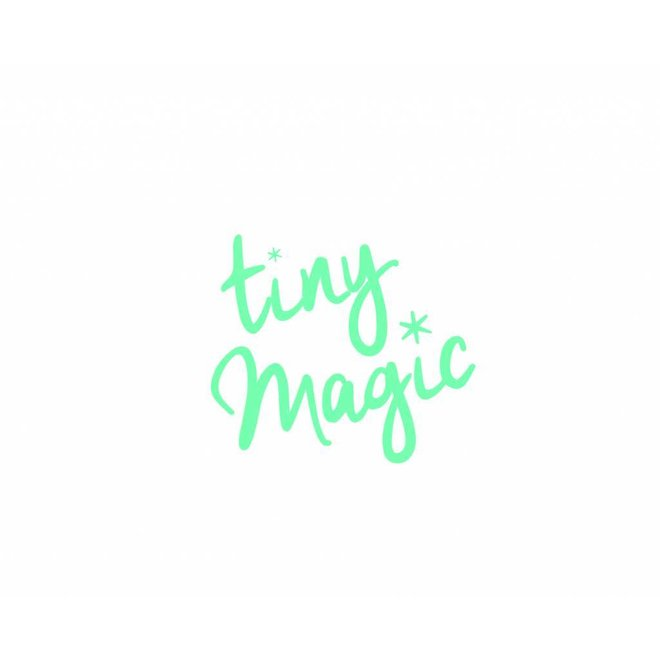 Fairy Land| Tiny Magic