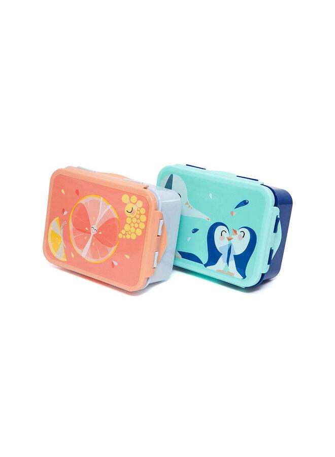 Lunchbox/Brooddoos Elephants